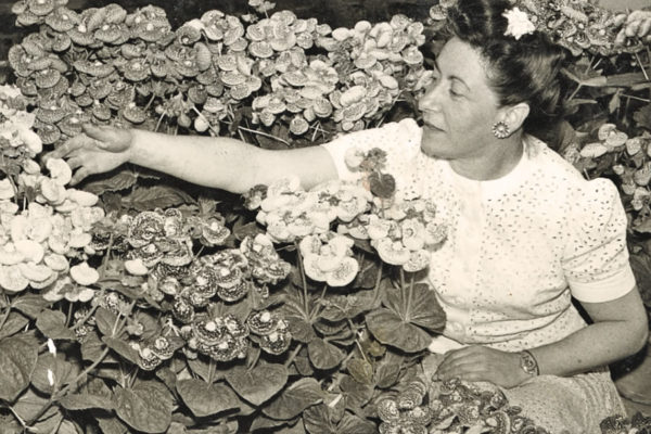 Sydney Stein: Golden Gate Park's First Female Gardener